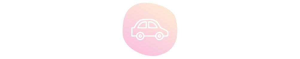 Ambientación natural para el coche