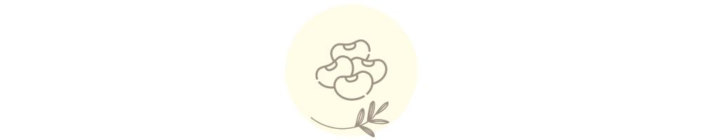 Legumbres - Alimentación ecológica