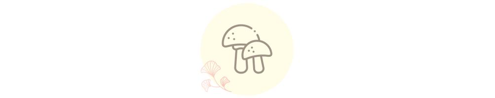 Setas - Alimentación ecológica